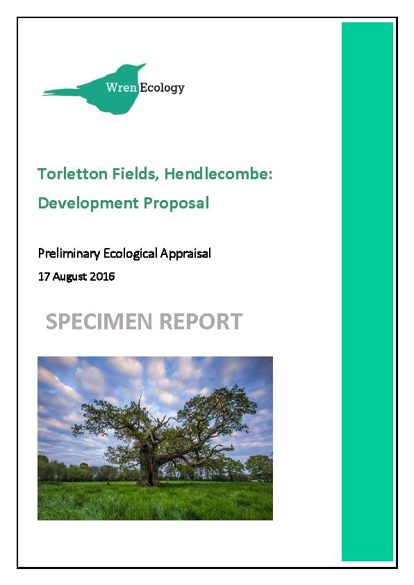 specimen report